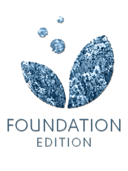 Foundation Edition